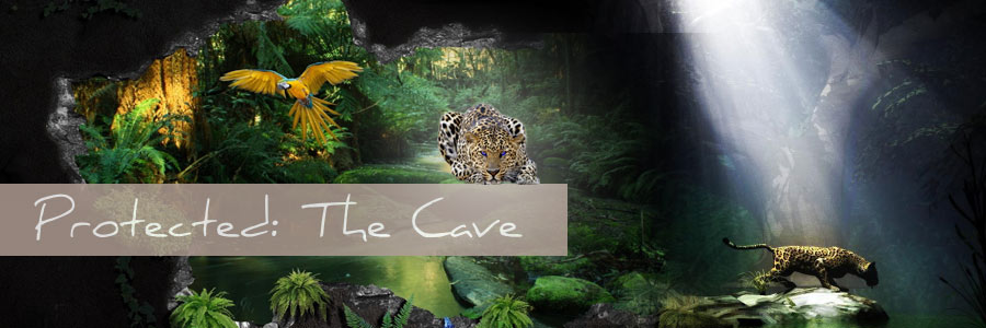 Protected: The Cave
